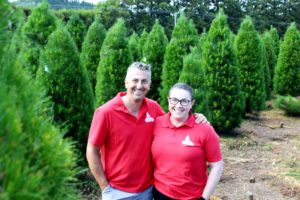 Read more about the article Sights and smells of a Kiwi Christmas at Courtneys' Christmas Tree Farm