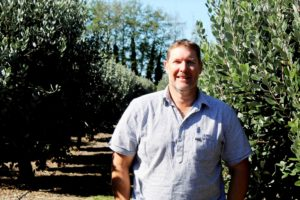 Read more about the article Feijoas the fruit of orchardist's labour