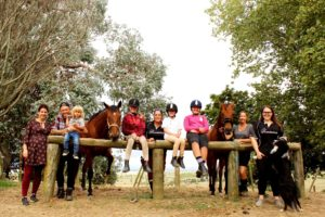 Read more about the article Humans learn a thing or two from retired racehorses