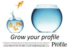 Read more about the article Valley Profile celebrates 1st birthday by publishing weekly