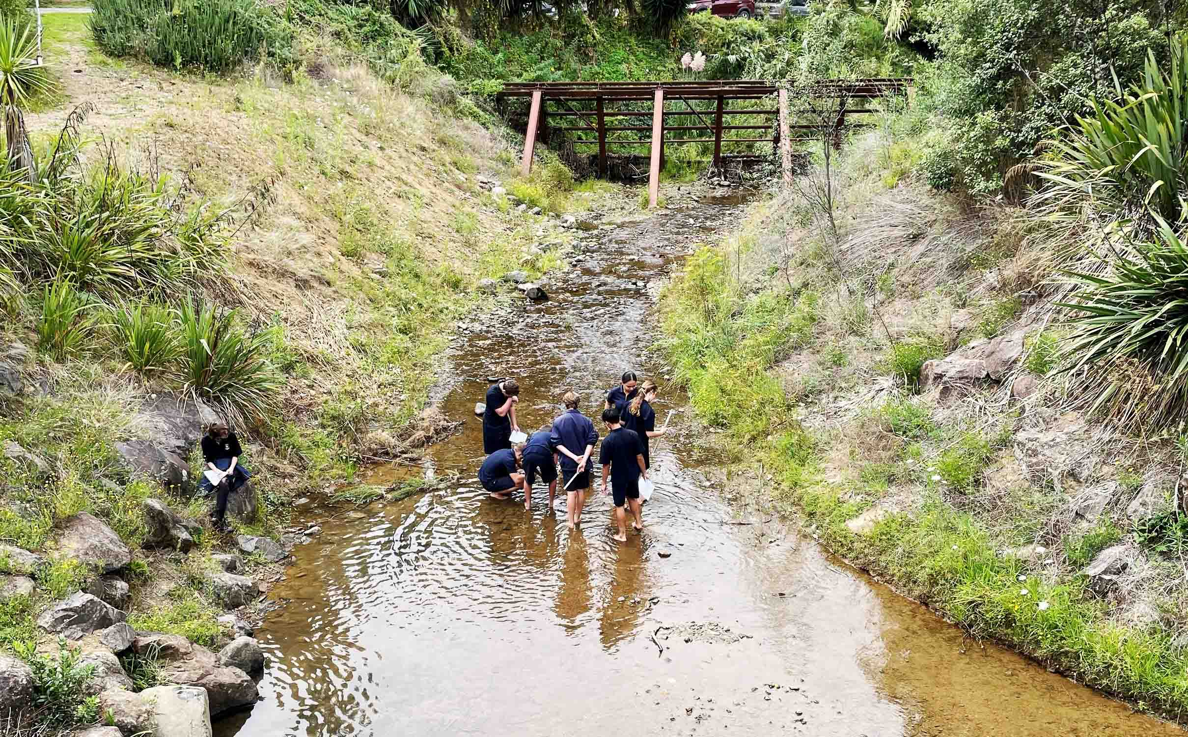 Read more about the article Environment DNA tests planned for region's streams
