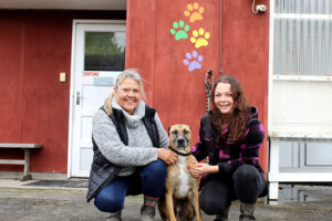 Read more about the article Pets in good hands with new owners at Playful Paws