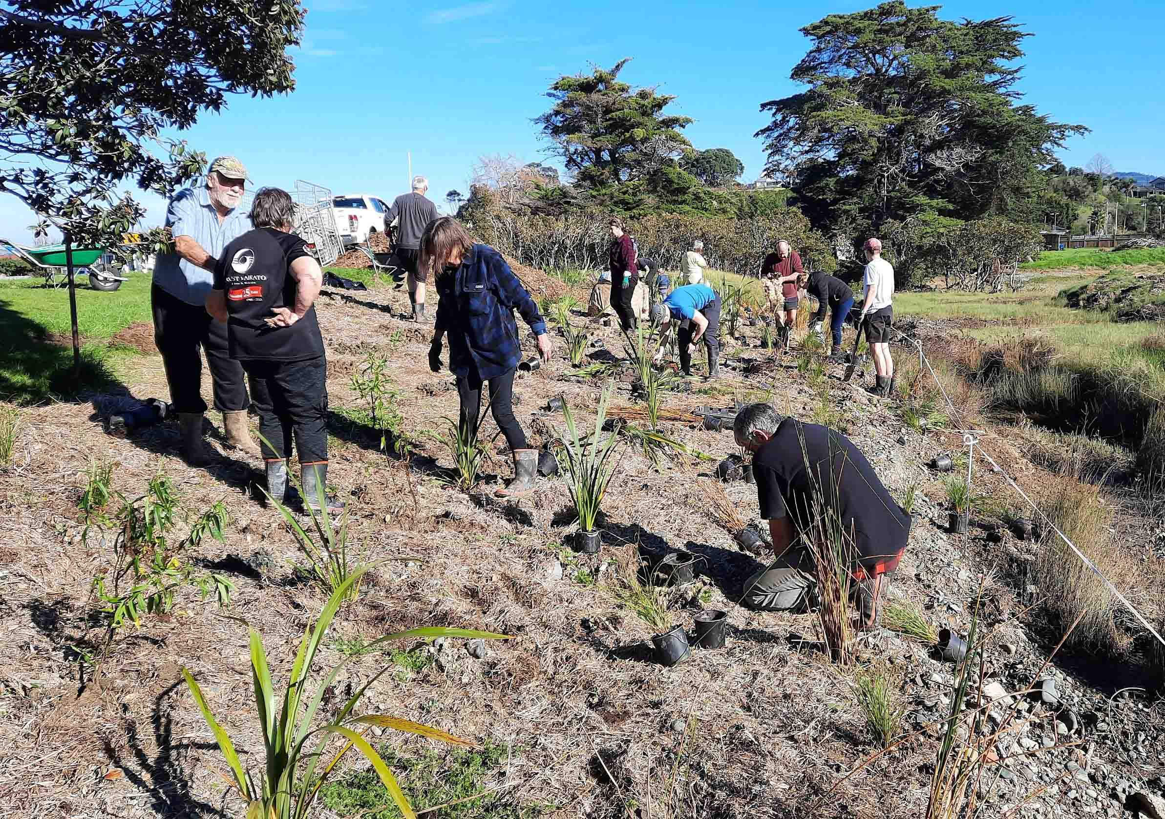 Read more about the article Hauarahi Stream given a helping hand